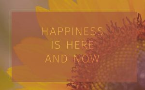 Happiness: Your Path to Success in Health, Relationships and Work